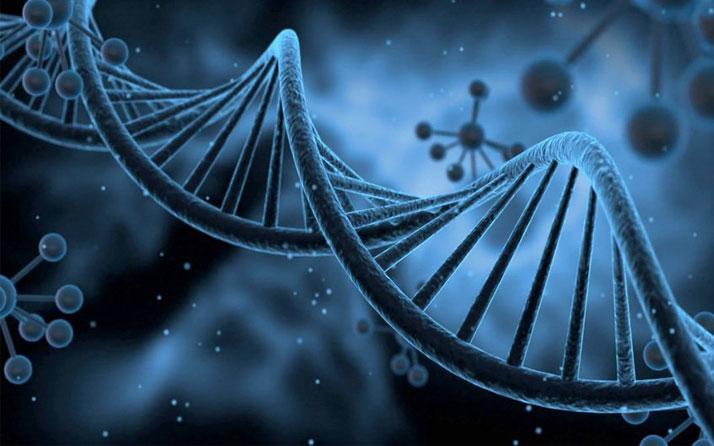 HPV DNA